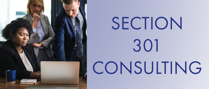 Section 301 Consulting