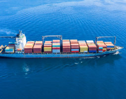 Container Rate Indexes Show Record Growth