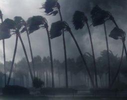 Weekly Logistics News Headlines: Hurricane Ida, Pacific Congestion, Rail Drama